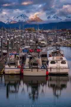 China Poot Peak Over Homer Harbor
