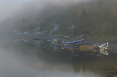 Foggy Morning Dories